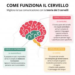infografica-come-funziona-il-cervello-realizzata-da-ars